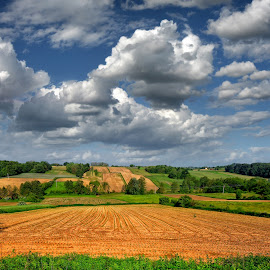 by Manuela Dedić - Landscapes Prairies, Meadows & Fields (  )