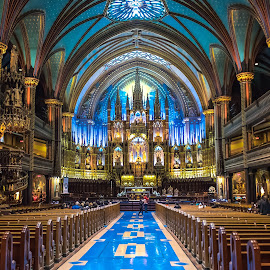 Inside Notre Dame by Darren Sutherland - Buildings & Architecture Places of Worship ( montreal, montreal.quebec city )