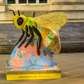 Bee in the city 1 by Petrica Manzala - City,  Street & Park  Street Scenes ( bee, blue, street )