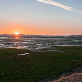 Golden hour by Mara de Jesus - Landscapes Sunsets & Sunrises ( nikon, landscape photography, devon, uk, sunset, amateur, river, landscaping, landscape )