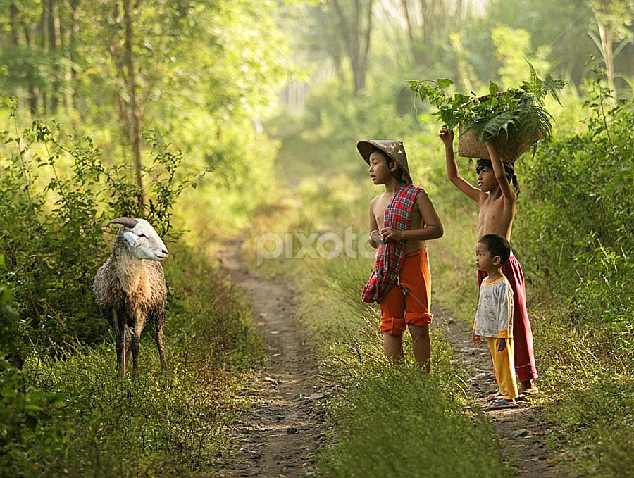 how are you?? by Budi Cc-line - Babies & Children Children Candids ( indonesia )