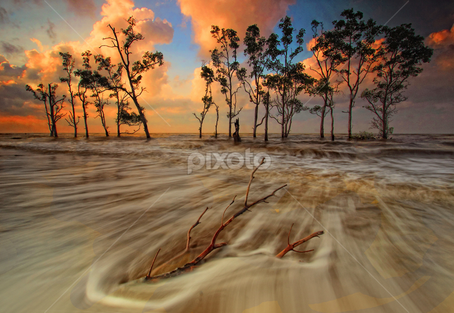 WAVE by Farid Wazdi - Landscapes Beaches