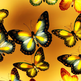 Light Butterfly by Ilham  Halimsyah - Abstract Patterns