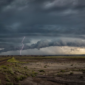 Shelf Cloud Lightning by Scott Wood - Landscapes Weather ( clouds, petrified forest, structure, azwx, desert, highway, a6000, storm chasing, storm, sony, lightning, stormchasing, arizona, weather, shelf, rain,  )