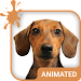Doggy Dream Animated Keyboard + Live Wallpaper Icon