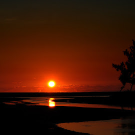 Summer for Sunset by Chester Asehan - Landscapes Sunsets & Sunrises ( water, silhouette, sunset, summer, sun )