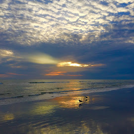 Beautiful sunsets and beach at Nadeura Beach , Florida by Susan Byrd - Landscapes Beaches