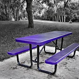 Purple Picnic Table by Rita Flohr - City,  Street & Park  City Parks ( purple, black and white, landscape, park, picnic table )