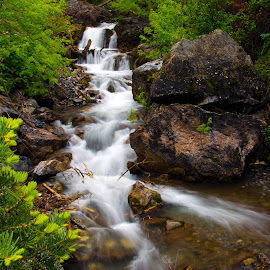 by Randall Roesner - Nature Up Close Water ( low contrast, medium quality, in focus, too dark )