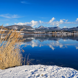 Lake by Igor Gruber - Landscapes Waterscapes