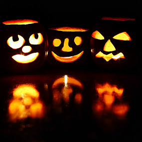 Waiting for tonight by Nicu Buculei - Public Holidays Halloween ( carved, lantern, pumpkins, halloween,  )