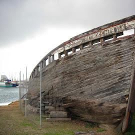 abandoned boay by Brian Adams - Transportation Boats ( wooden, wood, boat, abandoned,  )