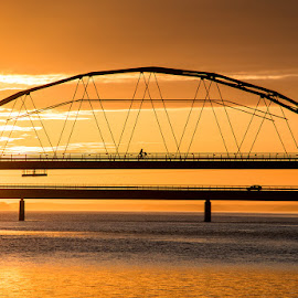 Sunset silhouette by Anita Nielsen - Buildings & Architecture Bridges & Suspended Structures ( reflection, #bridge, sunset, silhouette, bicycle )