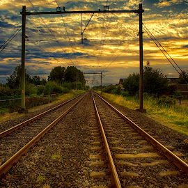 railway track by Egon Zitter - Transportation Railway Tracks ( railway, sunset, track, transportation, evening )