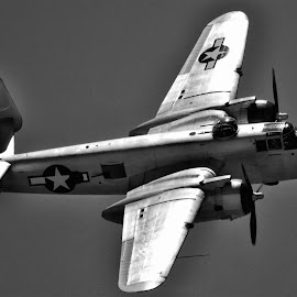 In the Mood by Tom Anderson - Transportation Airplanes ( day 2, calfornia, usaaf, bomber, north american b-25 mitchell, chino, planes of fame 2014 air show )