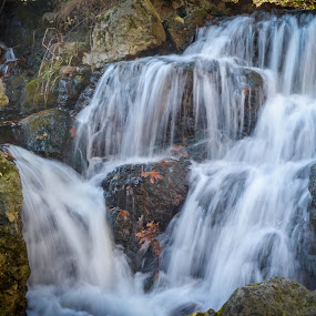 Small Cascade by Robert Coffey - Nature Up Close Water ( stream, nature, cascade, waterfall, rocks )