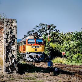 628-328 & 331 by Nagy Attila - Transportation Trains ( 2015 )