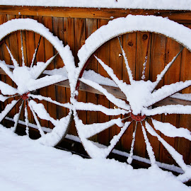 Antique wagon wheels by Carol Leynard - Artistic Objects Antiques ( wagon wheels, winter, snow, wheels, spokes )