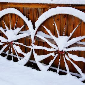 Antique wagon wheels by Carol Leynard - Artistic Objects Antiques ( wagon wheels, winter, snow, wheels, spokes )