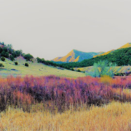 Way Out... by Joseph Emmons - Painting All Painting ( other, lost, surrealism, impression, colorado, willow, hiking, backdrop, wall art, break, classy, pastels, adventure, wilderness, nature, oak, original, scenery, prepared, painting )