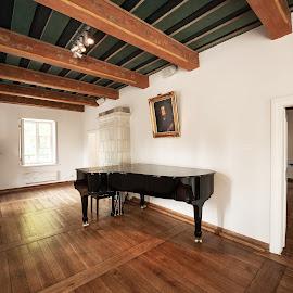 Frederic Chopin Museum Zelazowa Wola by Paweł Mielko - Buildings & Architecture Public & Historical ( piano, museum, childhood, chopin, frederic chopin, old, poland, buildings, architecture, interior, home )