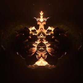 Sacred Fire  by Virginia Howerton - Digital Art Things