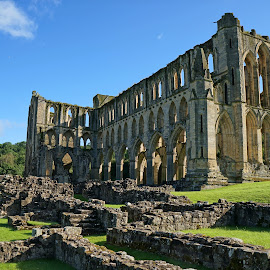 Morning sun on Rievaulx abbey by Andy Bertenshaw - Buildings & Architecture Public & Historical ( england, yorkshire, monastic, rievaulx abbey )