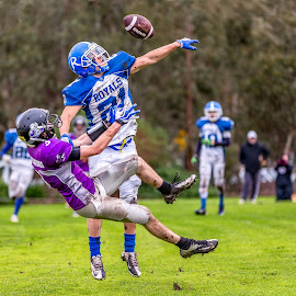 Gridiron Victoria by John Torcasio - Sports & Fitness American and Canadian football ( teamwork, sports, gippsland gladiators, melbourne uni royals, gridiron victoria )