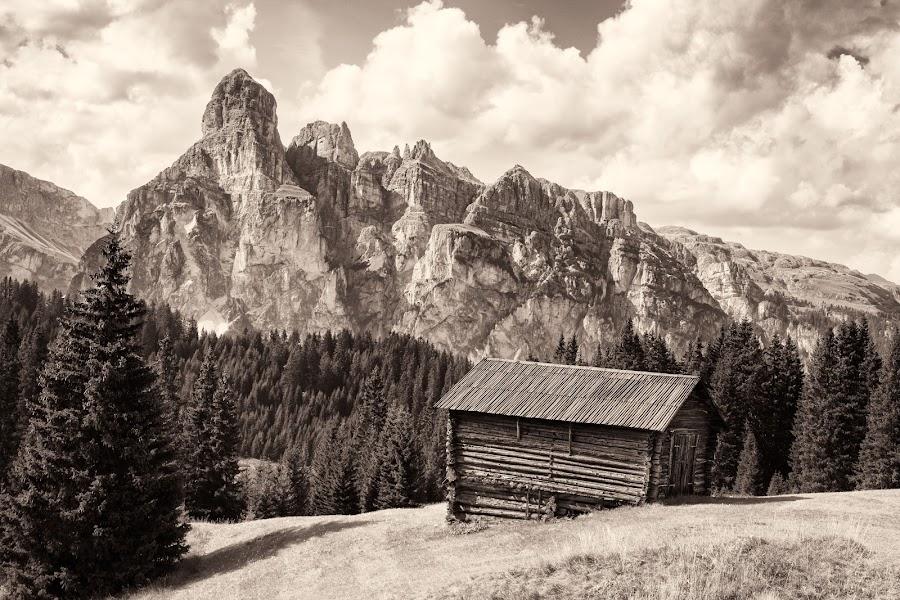 Dolomite Landscape by Sam Alexander - Black & White Landscapes ( 2017, august, italy )