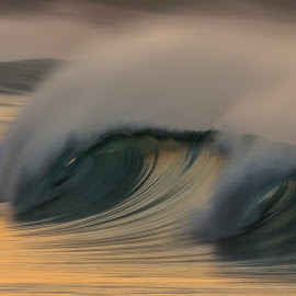 Golden Splash by Clive Wright - Landscapes Waterscapes ( water, green, waves, sea, ocean, gold, sparay )