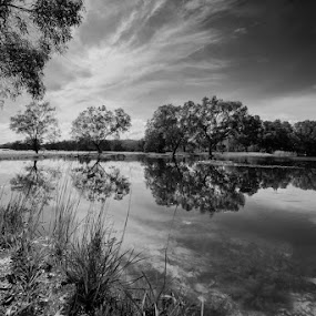 Just a reflection.. by Fariz Mohammad - Landscapes Forests ( clouds, reflection, monochrome, black and white, trees, river )