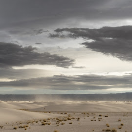 White Sands National Monument by Drew Campbell - Landscapes Deserts