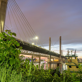 Abraham Lincoln Bridge by Matt Pranger - Buildings & Architecture Bridges & Suspended Structures ( night photography, suspension bridge, louisville, long exposure, bridge )
