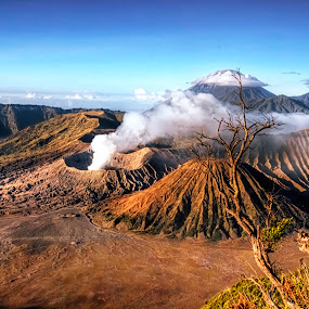Bromo Tengger Semeru by Alvin Lee Hahuly - Landscapes Mountains & Hills