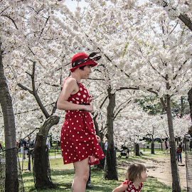 by Mg Photography - People Family ( fashion, model, joy, minnie mouse, daughter, intriguing, children, beauty, people, pretty, child, washington, pose, nature, joyfull, woman, family, perfect, flower, downtown, dc, cherry blossom festival, park, national, fun, families, posing, women, portrait, cherry tree, enjoyment, godess, female, dress, modeling, wife, outdoors, outdoor, washington dc, nations capital, stunning, outside,  )