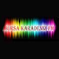 Bursa Karadeniz FM APK for Ubuntu