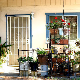 small spaces by Leslie Hunziker - Buildings & Architecture Other Exteriors ( home, exterior, architecture, garden )
