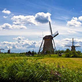 Wind Mills by Hernan Halim - Landscapes Travel ( kinderdijk, holland, wind mills, travel )