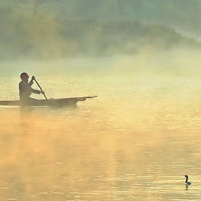 Misty Morning by Avinash Lodhi - People Street & Candids ( water, bird, trees, people, mist )