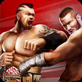 Champion Fight 3D