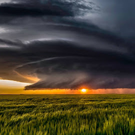 Kansas Supercell by Rob Darby - Landscapes Weather ( forboding, thunderstorm, sunset, dark, supercell, kansas, rain )