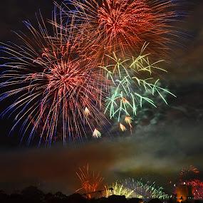 Fire In Colour by Kamila Romanowska - Public Holidays New Year's Eve ( 2013, australia, nye, fireworks, celebration, ney year, sydney )