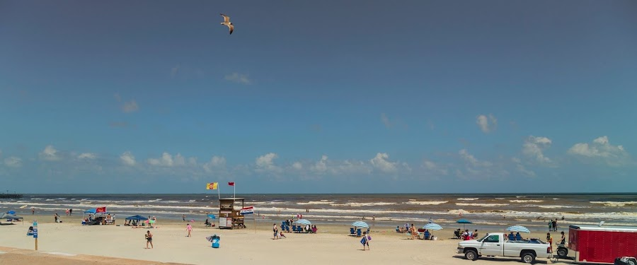 Beautiful Day at the Beach by Bonnie Davidson - Public Holidays July 4th ( clouds, water, vendor, white, beach, fun, landscape, people, city, galveston island, lifeguard, seagull, sky, umbrellas, blue, fourth of july, beige, red. bird, gulf of mexico, 4th,  )