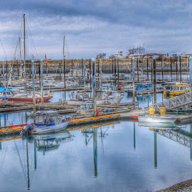 Homer Boat Harbor by Patricia Phillips - Landscapes Travel ( boats harbors alaska homer )