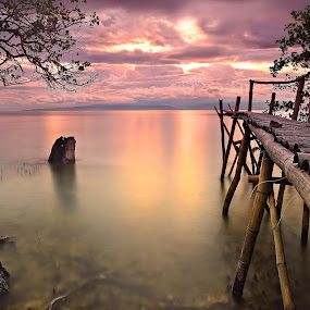 Bridge to nowhere by Anthony Serafin - Landscapes Waterscapes