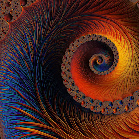 Glowing Spiral by Amanda Moore - Illustration Abstract & Patterns ( digital art, fractal art, fractal, digital )