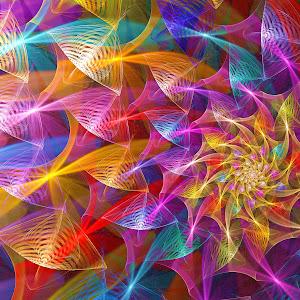 PW 11 Rose-wf Linr Spherical Miscellaneous Biplr Fx 02-24-18 PZ Pix.jpg
