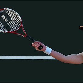 eye on the ball by Leon Pelser - Sports & Fitness Tennis ( 1/500 sec, no flash, f 5.6, auto wb, iso 400,  )
