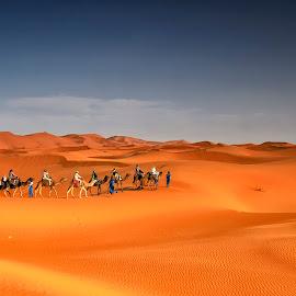 Erg Chebbi by Stanley P. - Landscapes Deserts ( landscapes, dessert )