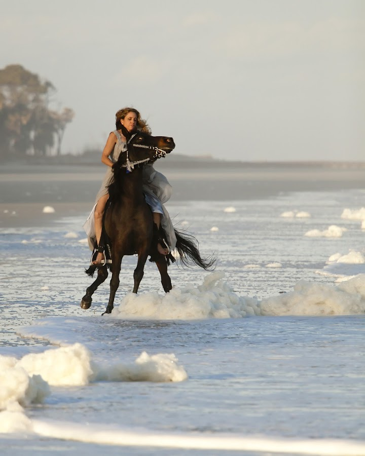 woman riding fearful wild horse on beach by John Wollwerth - News & Events Sports ( gallop, ride, person, queen, one, horse, ocean, beach, recreation, landscape, run, break, rider, girl, nature, buck, woman, motion, evening, activity, bareback, animal, water, mare, control, sand, wild, dream, speed, beautiful, scared, rear, sport, sea, forest, scenic, equestrian, horseback, uncontrolled, princess, formal, dress, outdoor, arabian, fast, fear )